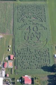 Corn maze smaller